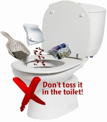 Do Not Toss It In Toilet